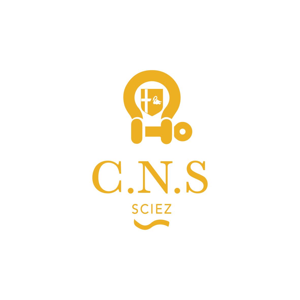 CNS_logo_jaune